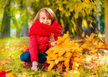 autumn-3877716_960_720 - Copie - Copie